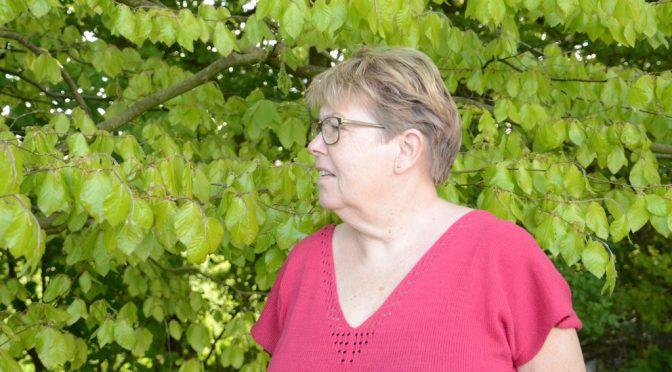 Sommerbluse med hulrække i V-hals og i nakke